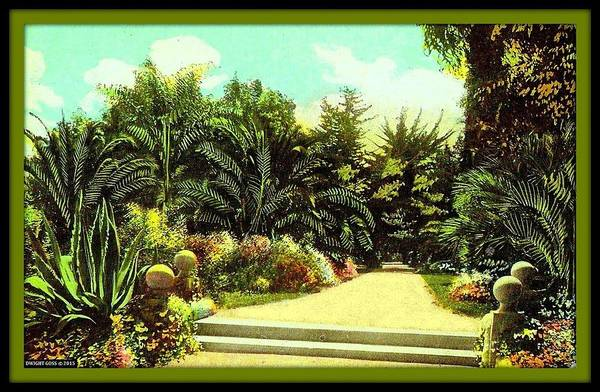 Palms Art Print featuring the mixed media Alameda Park, Santa Barbara Ca, 1910 by Dwight GOSS