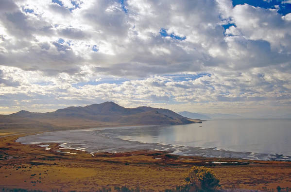 Bay Art Print featuring the photograph Antelope Island 2 by Steve Ohlsen