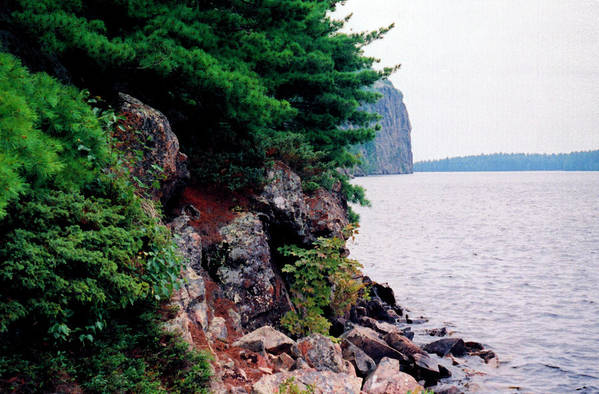 Park Art Print featuring the photograph Bon Echo Shoreline Wc 2 by Lyle Crump