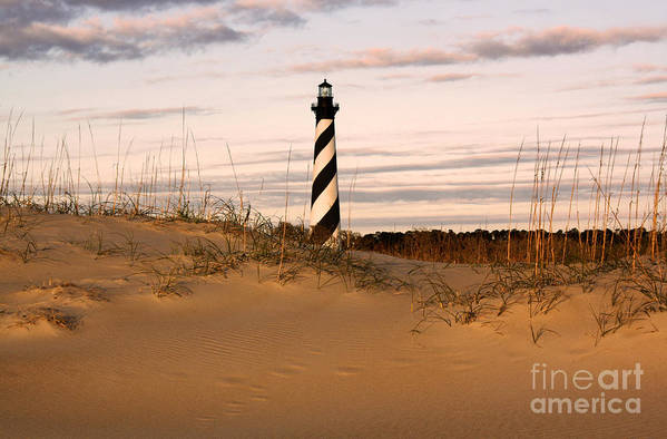 Lighthouse Art Print featuring the photograph Cape Hatteras Lighthouse by Tony Cooper