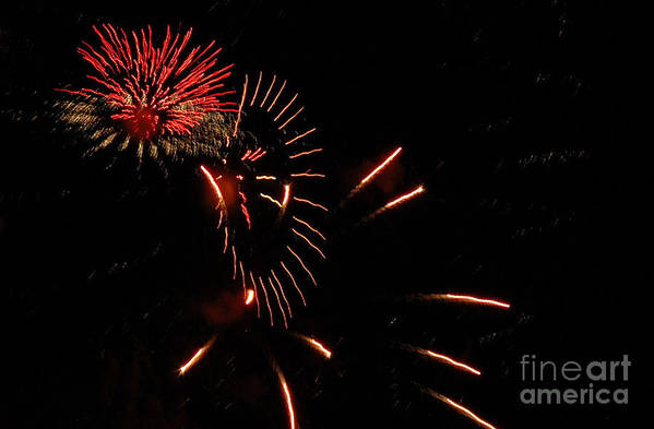 4th Of July Art Print featuring the photograph Cat Burst by Norman Andrus