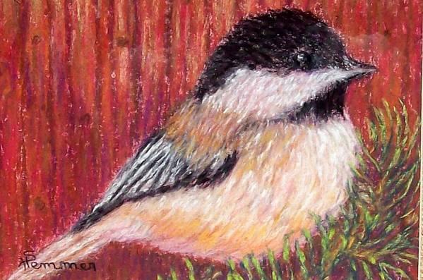 Chickadee Art Print featuring the pastel Chickadee by Sandy Hemmer