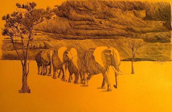 Africa Art Print featuring the drawing Elephant Walk by Dan Hausel