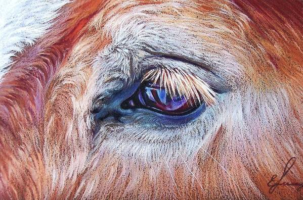 Animal Art Print featuring the drawing Eyelashes by Elena Kolotusha