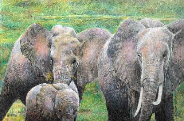 Elephant Art Print featuring the drawing Family Outing by Arline Wagner