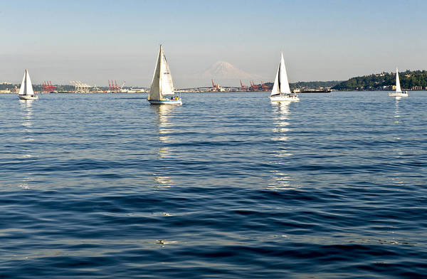 Seattle Art Print featuring the photograph Four Sailboats by Tom Dowd