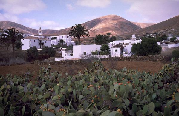 Fuerteventura Art Print featuring the photograph Fuerteventura Iv by Flavia Westerwelle