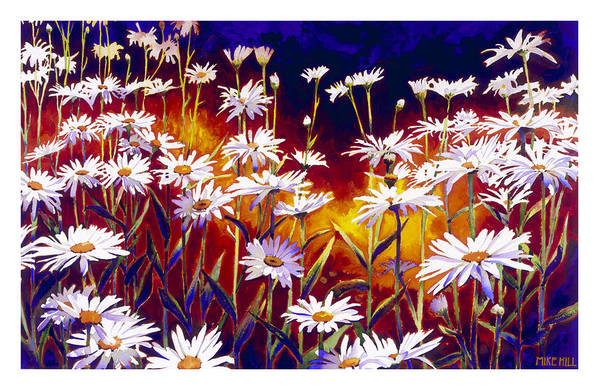 Daisy Daisies Field Flowers Warm Colors Cool Day Blues Art Print featuring the painting Give Me Your Answer Do by Mike Hill
