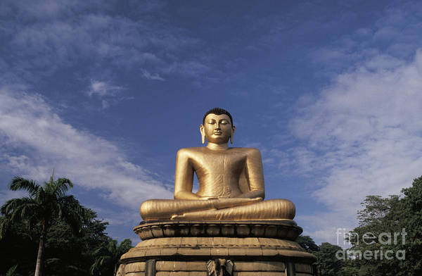 Asian Art Art Print featuring the photograph Golden Buddha by Larry Dale Gordon - Printscapes