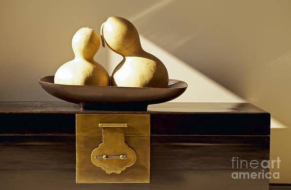 Art Art Print featuring the photograph Gourds Still Life II by Kyle Rothenborg - Printscapes