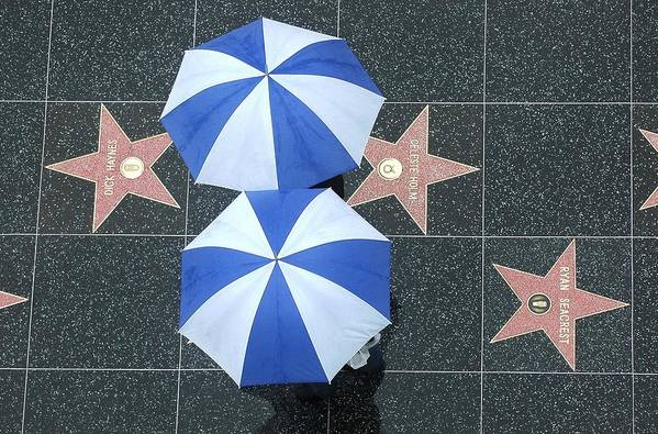 Umbrella Art Print featuring the photograph Hollywet by Dan Holm