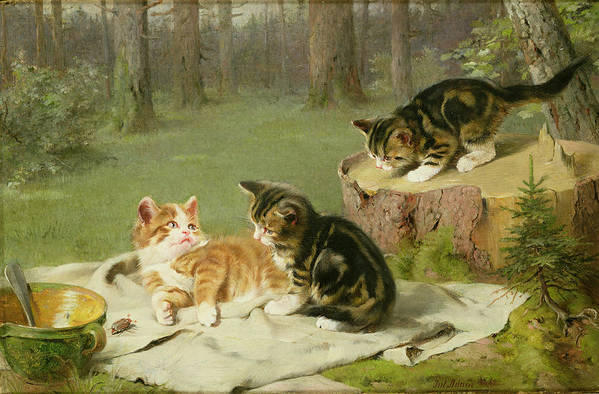 Kittens Playing (oil On Canvas) By Ewald Honnef (19th Century) Art Print featuring the painting Kittens Playing by Ewald Honnef