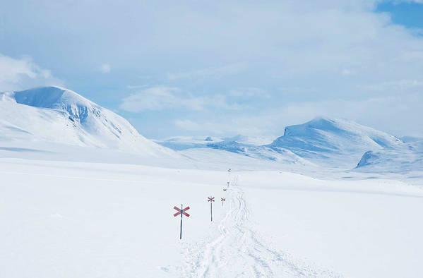 Lapland Art Print featuring the photograph Lapland by Elisa Locci