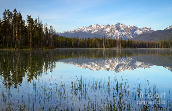 Idaho Art Print featuring the photograph Little Redfish by Idaho Scenic Images Linda Lantzy