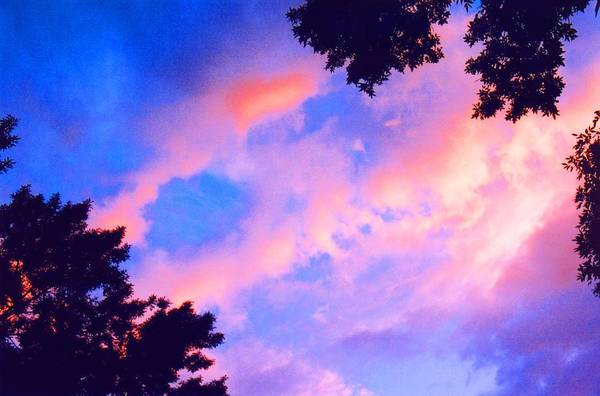 Sky Art Print featuring the photograph Looking Up 2 by Lyle Crump