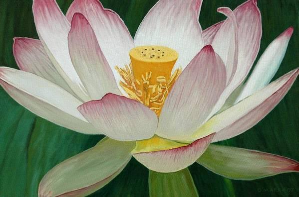 Flower Art Print featuring the painting Lotus Of Awakening by Allan OMarra