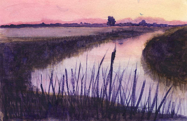 Everglades. Loxahatchee Art Print featuring the painting Loxahatchee Sunset by Donna Walsh