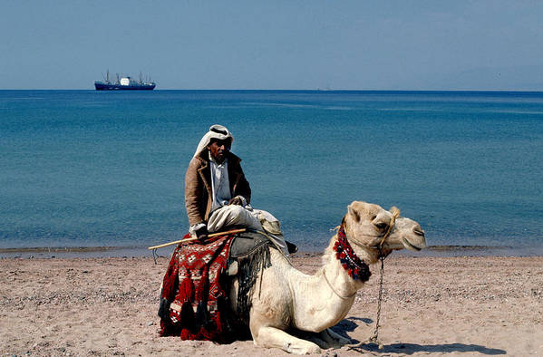 Dromedary Art Print featuring the photograph Man With Camel At Red Sea by Carl Purcell