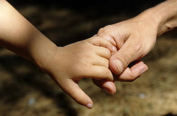 Bonding Art Print featuring the photograph Mother Holding Baby Daughter's Hand by Sami Sarkis