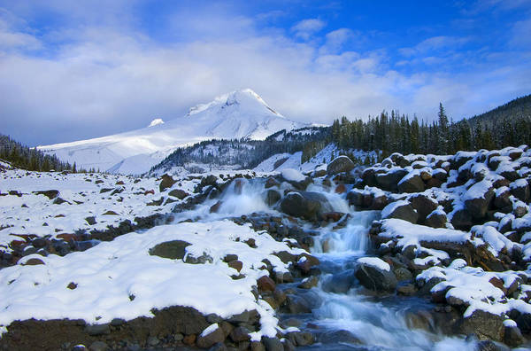Mt. Hood Art Print featuring the photograph Mt. Hood Morning by Mike Dawson