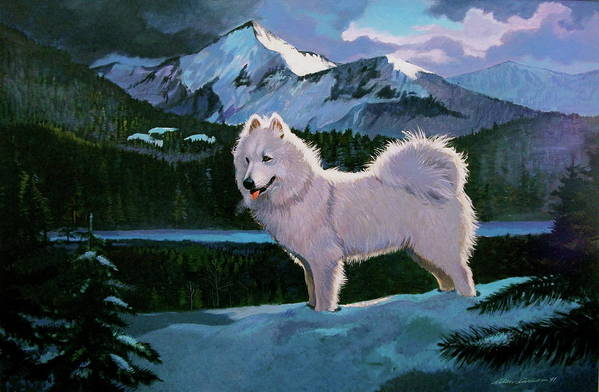 Dogs Samoyed Sled Dog Art Print featuring the painting My Dog Blizzard . by Alan Carlson