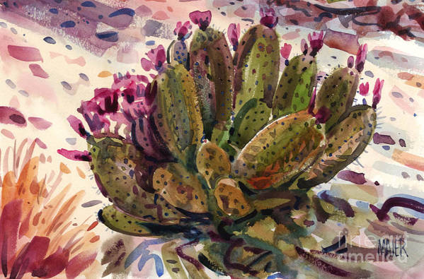 Opuntia Cactus Art Print featuring the painting Opuntia Cactus by Donald Maier