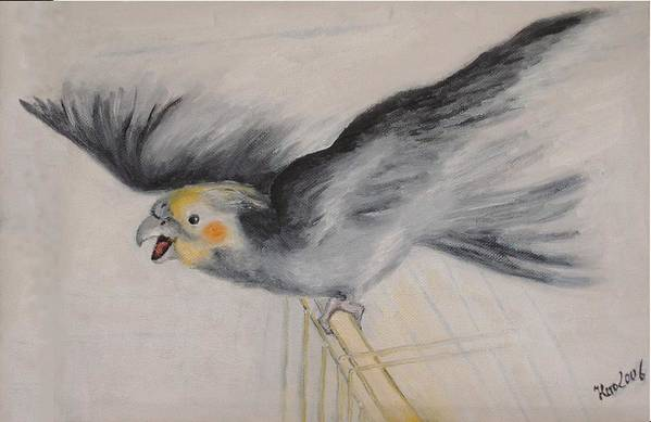 Cockatiel.pet Art Print featuring the painting our cockatiel Coco by Helmut Rottler
