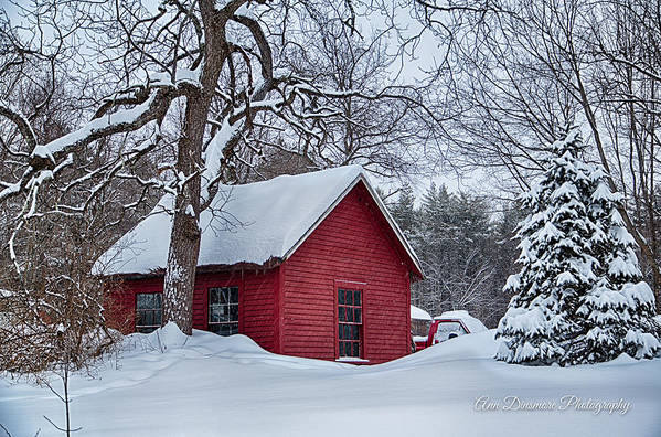 Red Shed Art Print featuring the photograph Red Shed by Ann Dinsmore