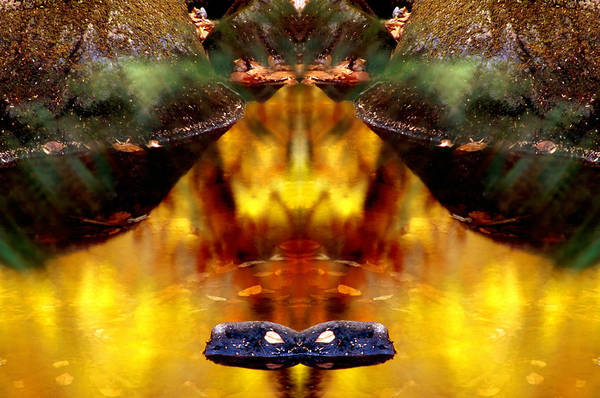 Reflected Art Print featuring the photograph Reflected Autumn by Jim DeLillo