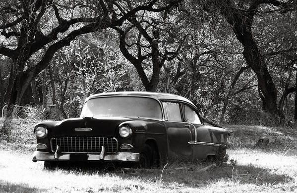 Americana Art Print featuring the photograph Resting Amongst The Oaks by Marilyn Hunt