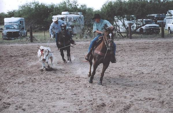 Horses Art Print featuring the photograph Roping Event 4 by Wendell Baggett