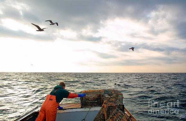 Fishing Boat Art Print featuring the photograph Setting Lobster Traps In Chatham On Cape Cod by Matt Suess