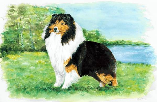 Shetland Sheepdog Art Print featuring the painting Sheltie Wait by Kathleen Sepulveda