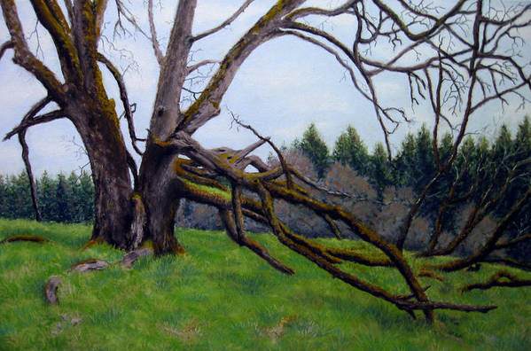 Landscape Art Print featuring the painting Signature Oak by Carl Capps