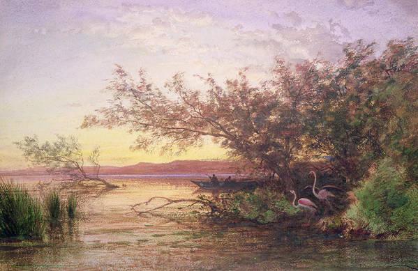 Flamingo Art Print featuring the painting Sunset, Camargue by Felix Ziem