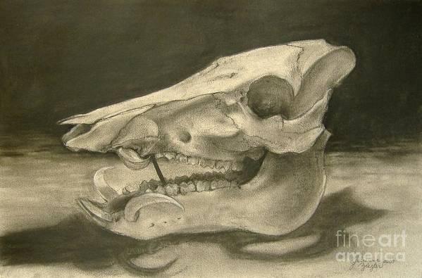 Pig Skull Art Print featuring the drawing This Little Piggy by Julianna Ziegler
