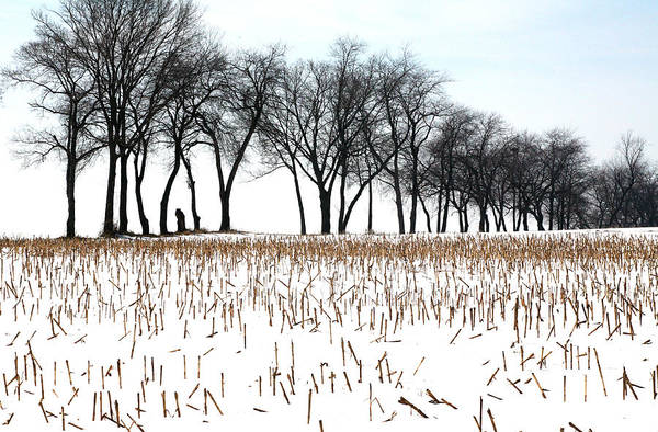 Landscape Art Print featuring the photograph Touch Of Winter by Chuck Kuhn