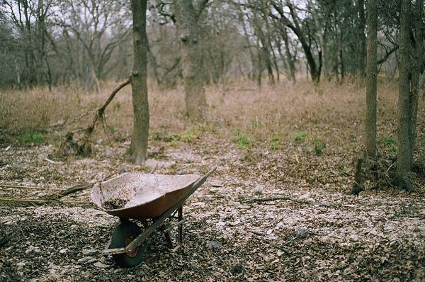 Art Print featuring the photograph Wheel Barrel In San Antonio by Kareem Farooq