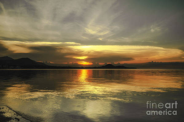 Michelle Meenawong Art Print featuring the photograph Yellow Sunshine by Michelle Meenawong