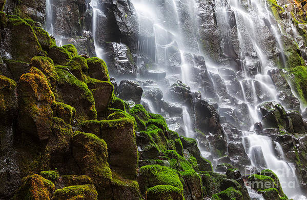 Shower Art Print featuring the photograph Ramona Falls In Oregon, Usa by Galyna Andrushko