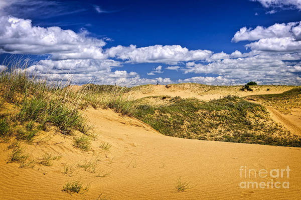 Sand Print featuring the photograph Desert Landscape In Manitoba by Elena Elisseeva