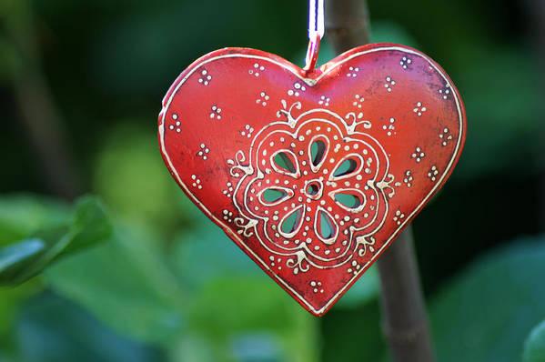 Heart Art Print featuring the photograph Heart by Jolly Van der Velden