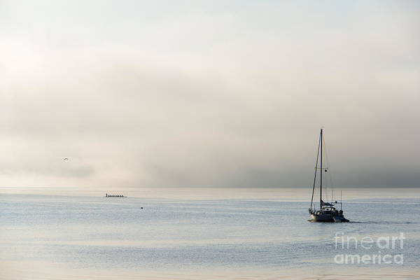 Fog Art Print featuring the photograph Morning Mist by Mike Dawson