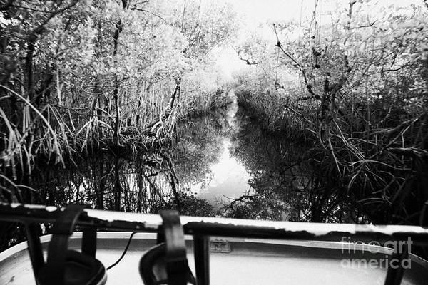 Airboat Art Print featuring the photograph On Board An Airboat Ride Through A Mangrove Jungle In Everglades City Florida Everglades Usa by Joe Fox
