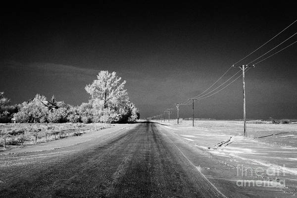 Salt Art Print featuring the photograph salt and grit covered rural small road in Forget Saskatchewan Canada by Joe Fox