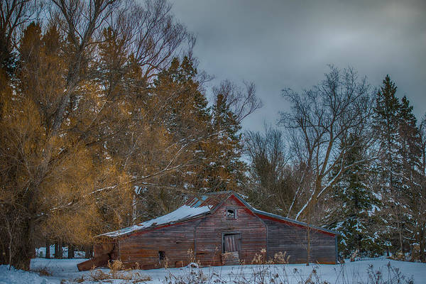 Old Barn Art Print featuring the photograph Small Barn by Paul Freidlund
