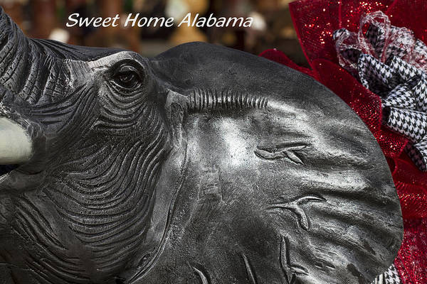 Alabama Football Art Print featuring the photograph Sweet Home Alabama by Kathy Clark