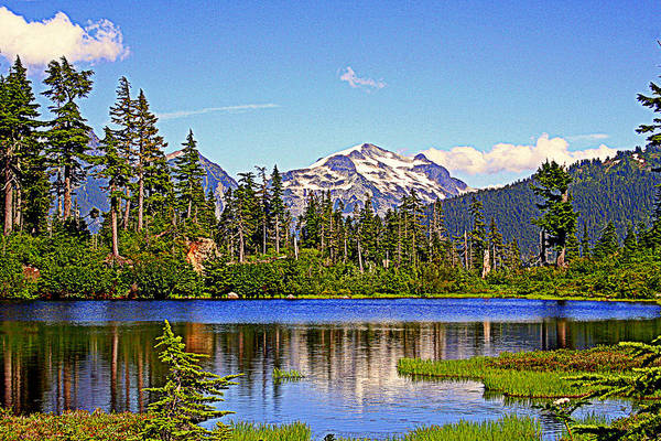 Mountains Art Print featuring the photograph Spring In The Cascades by Lynn Bawden