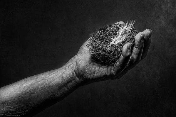 Hand Art Print featuring the photograph Untitled by Stephen Clough