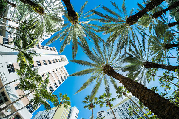 Architecture Art Print featuring the photograph Miami Beach by Raul Rodriguez